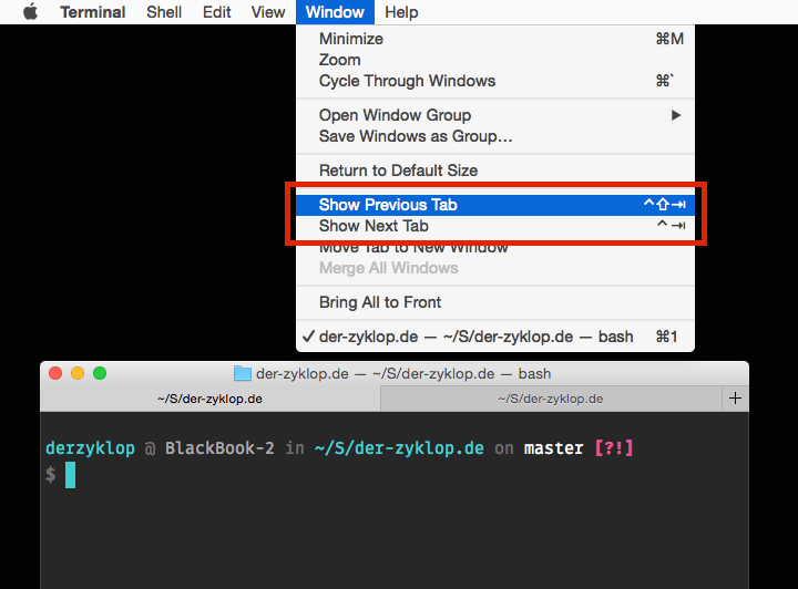 Switch Terminal tabs like you do in a Browser - DerZyklop
